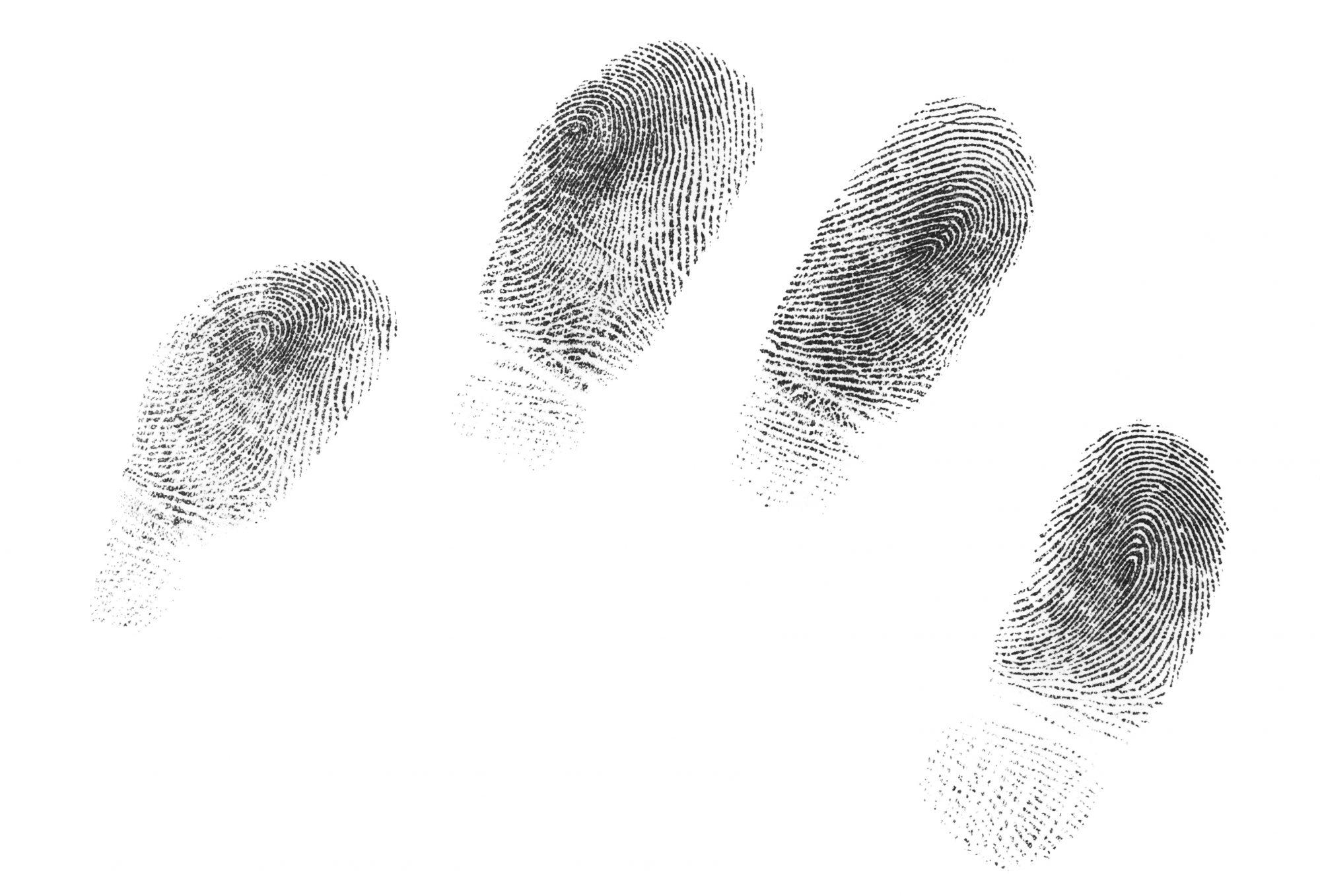 Fingerprint Identification Printed Digital Forensic Assurance